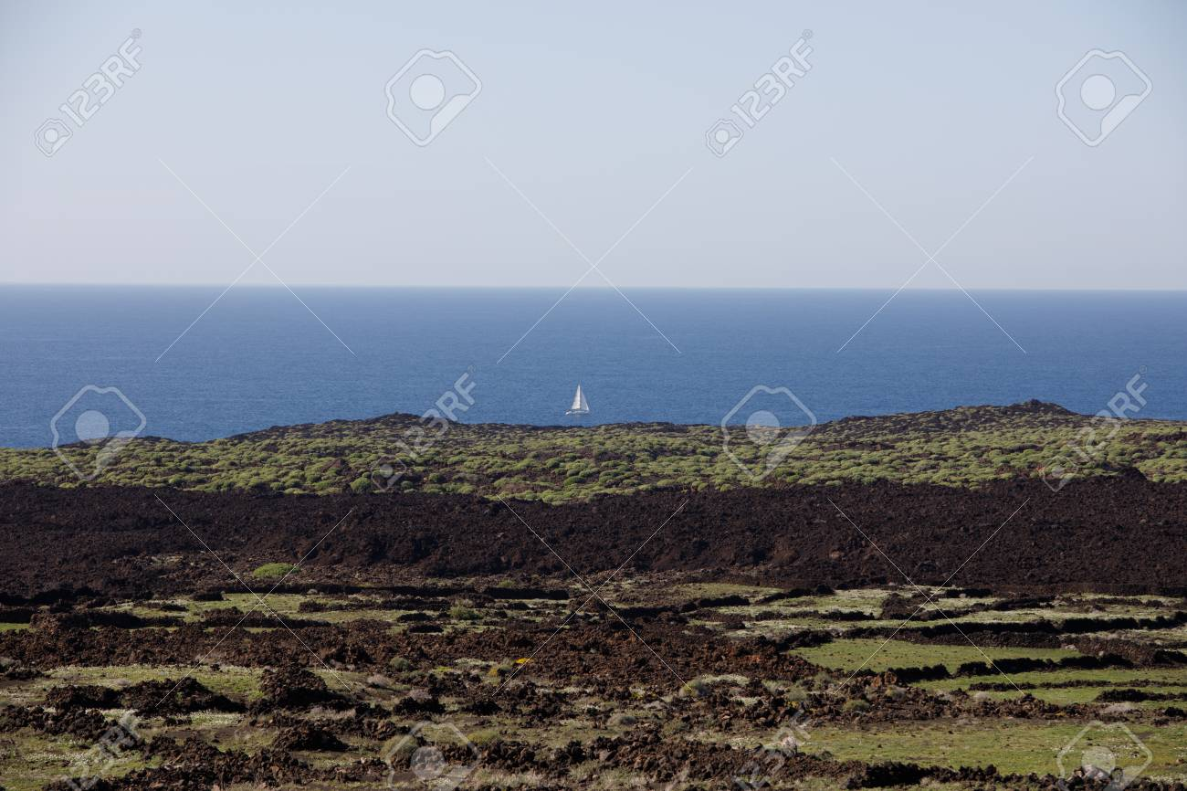 Volcanic, but green landscape on Lanzarote. - 81352939
