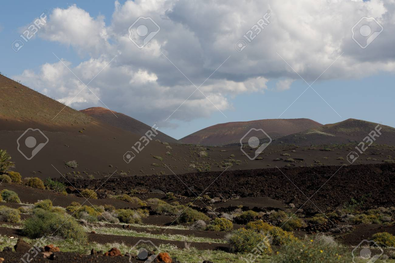 Volcanic, but green landscape on Lanzarote. - 81276628