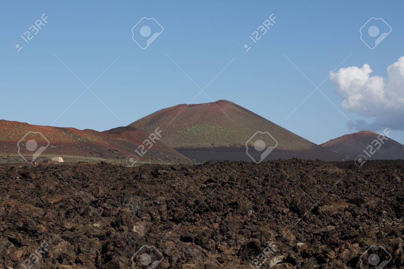Volcanic, but green landscape on Lanzarote. - 81259915
