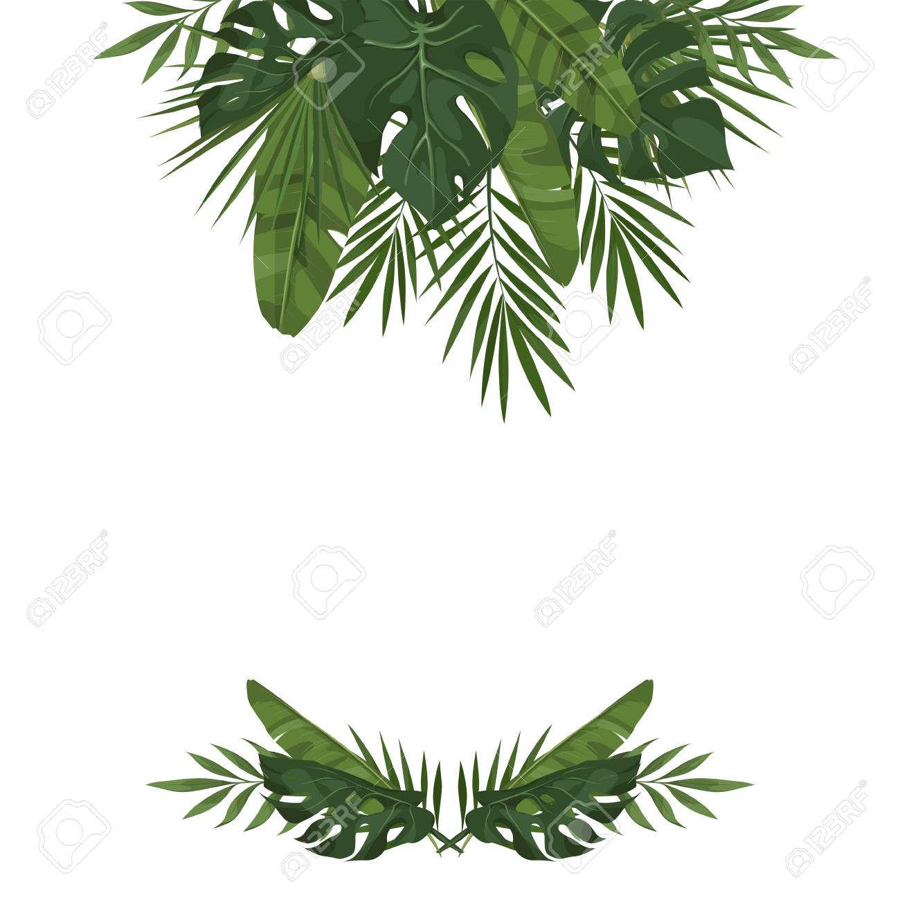 Vector Template With Tropical Leaves Trendy Summer Tropical Royalty Free Cliparts Vectors And Stock Illustration Image 80959165 Free mockups and templates in psd. vector template with tropical leaves trendy summer tropical