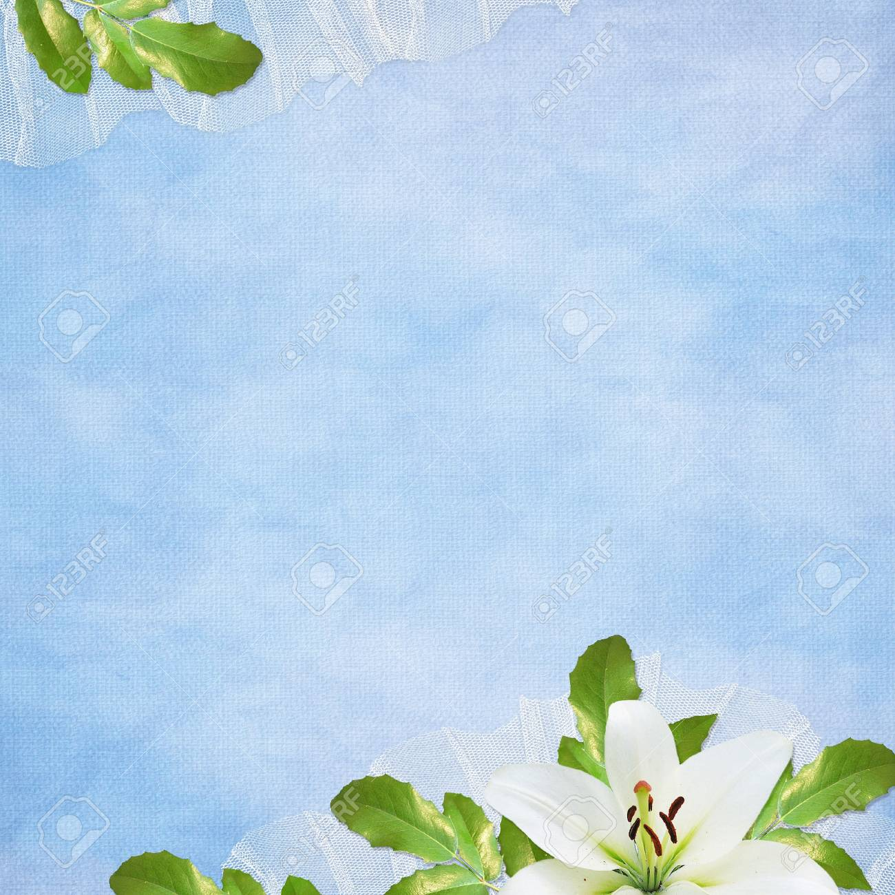 Card for the holiday  with flowers on the abstract background Stock Photo - 6975443