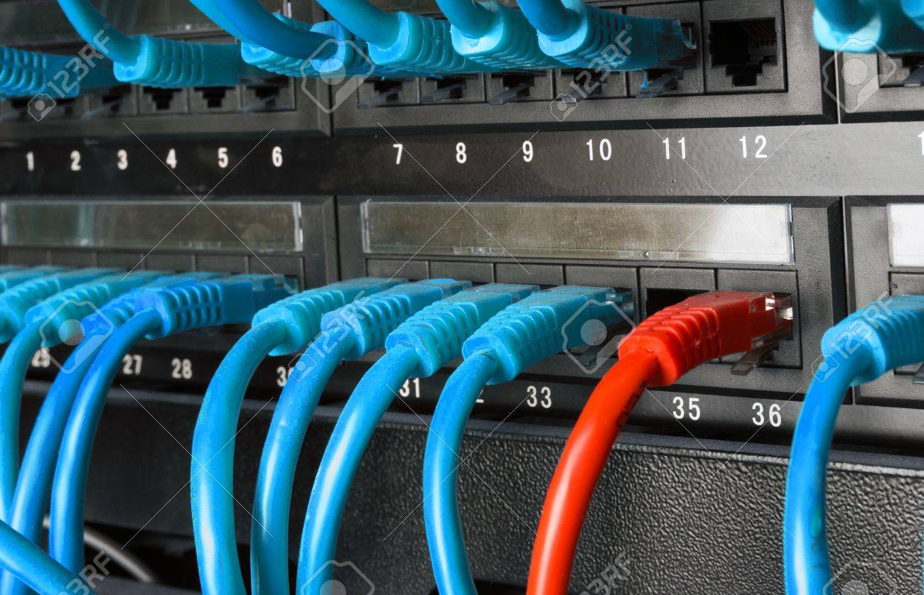 Server Rack With Blue And Red Internet Patch Cord Cables Connected ...