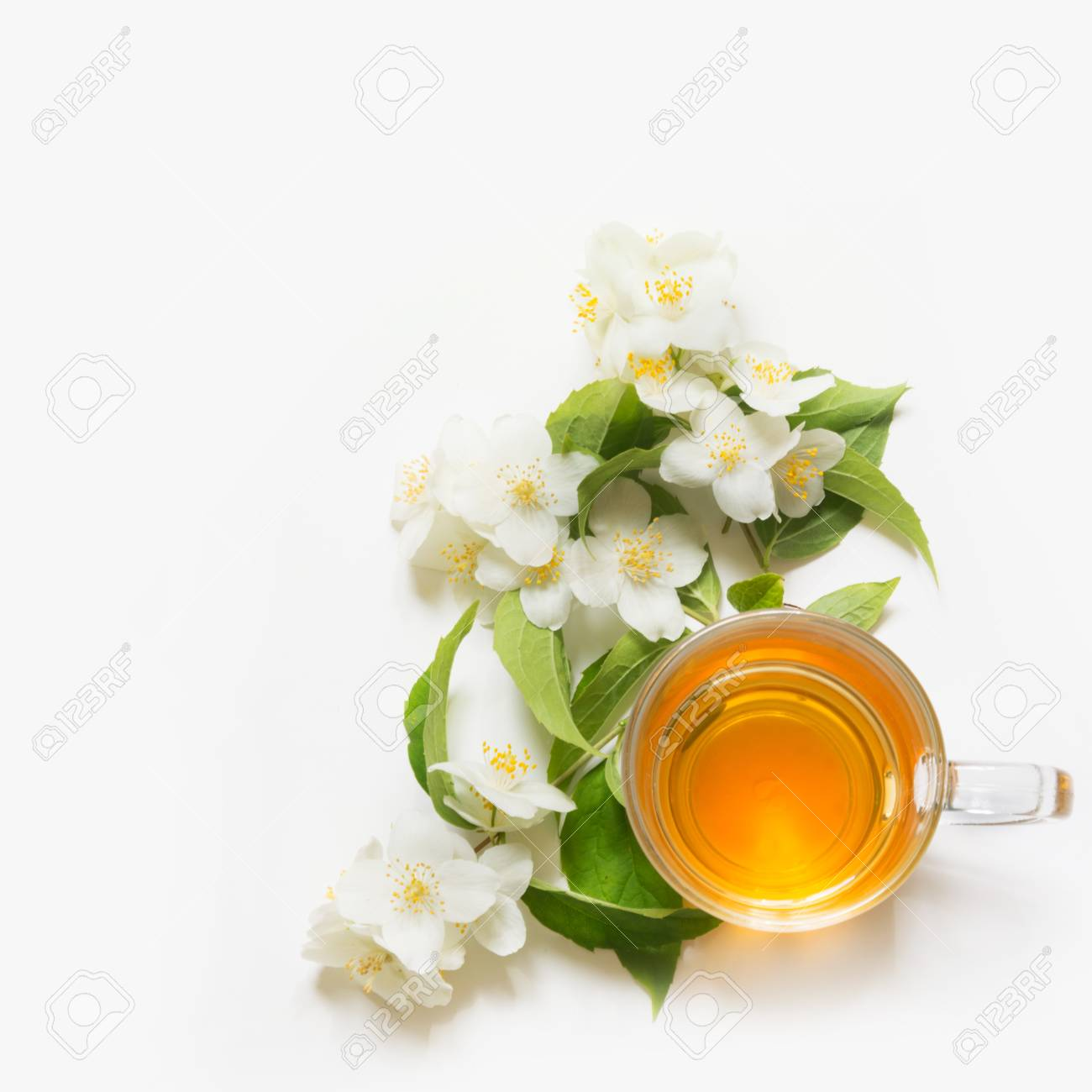 Jasmine Flowers And Cup Of Green Tea On White Background Top
