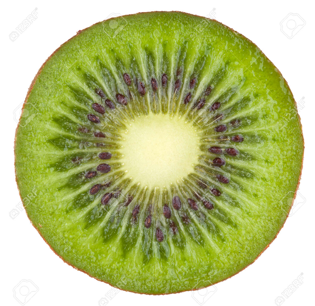 Kiwi isolated on white background with clipping path Stock Photo - 15064202