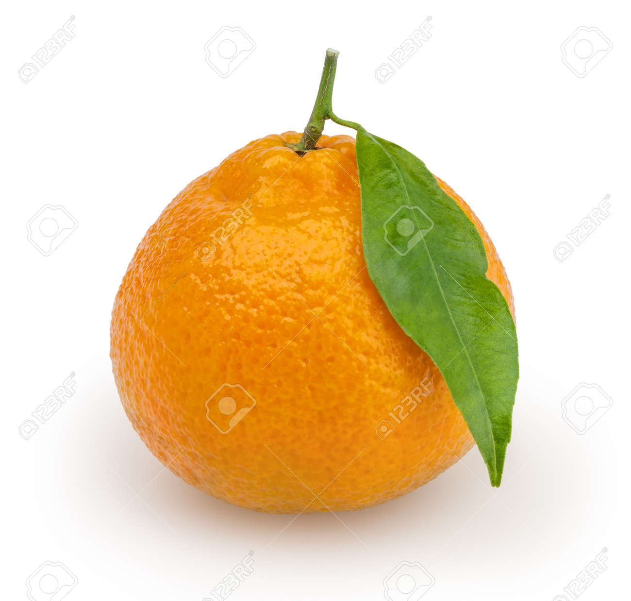 Tangerine isolated on white background with clipping path Stock Photo - 18148416
