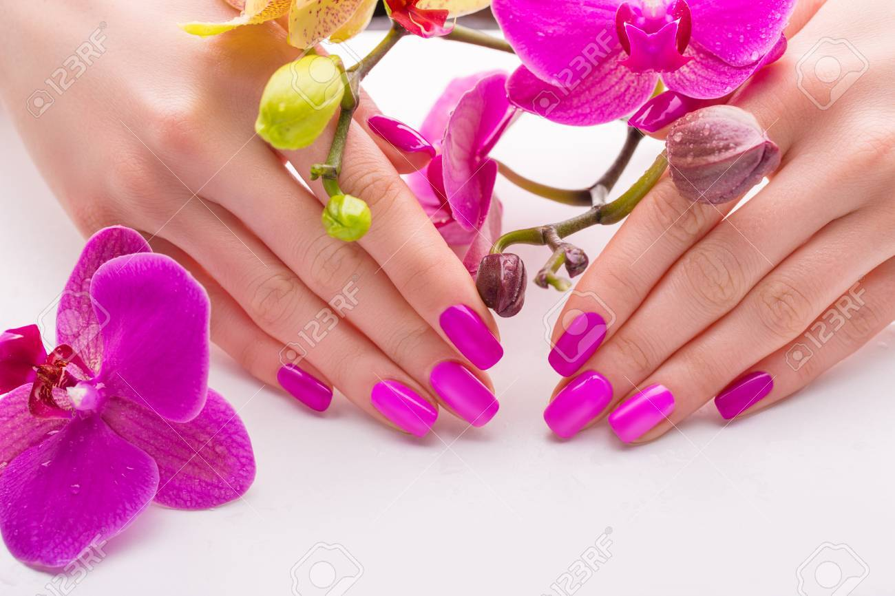 Beautiful Female Hands With Pink Nail Polish On A White Background ...