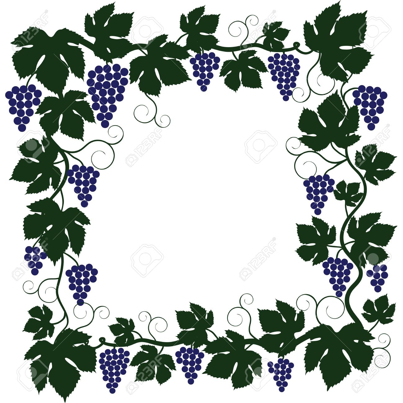 Bunch Of Grapes And Vine Frame Royalty Free Cliparts, Vectors, And ...