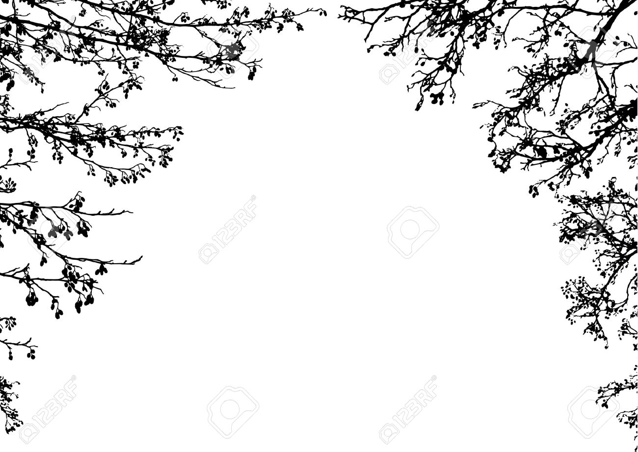 Black Silhouettes Of Tree Branches. Clip Art Frame Royalty Free ...