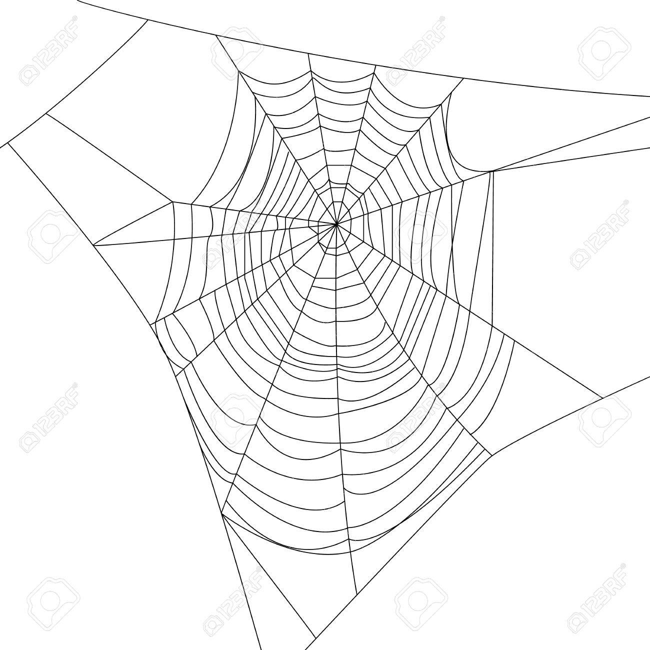 Spider web isolated on white for Halloween design - 44147398