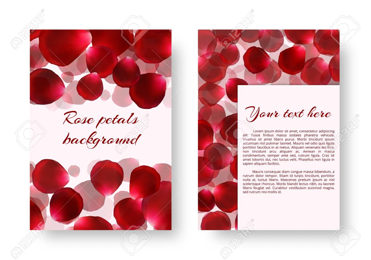 Background for drawing greeting cards with rose petals vector background for drawing greeting cards with rose petals vector design with borders from floral elements kristyandbryce Images
