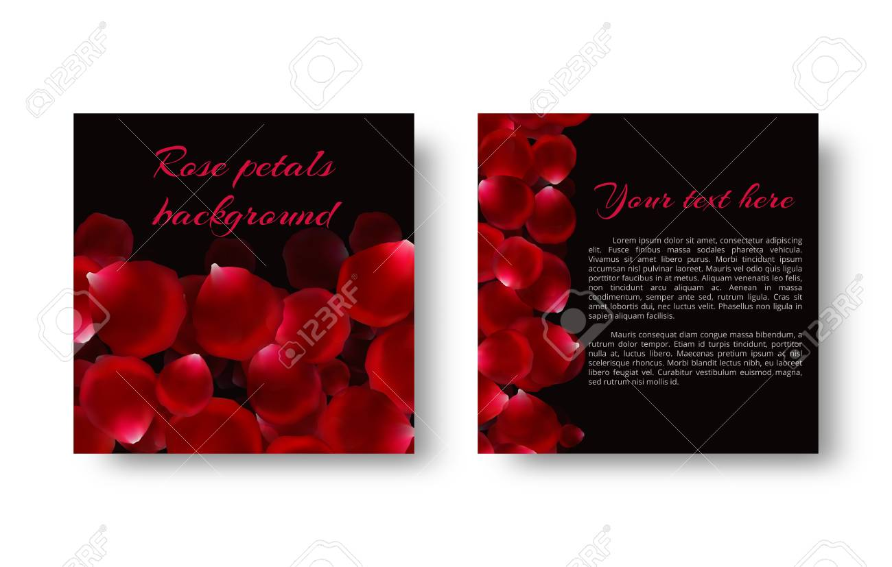 template greeting card with red flower petals royalty free cliparts