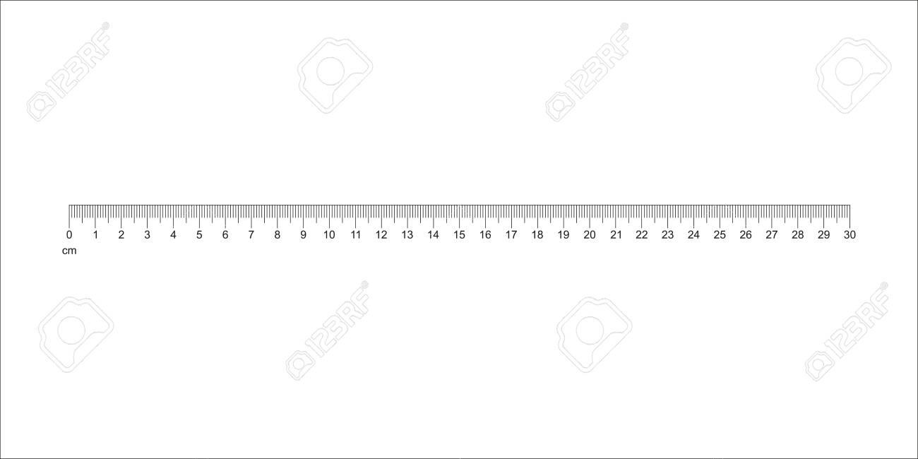 Ruler 30 cm. Measuring tool. Metric Centimeter size indicators. Vector - 102220394