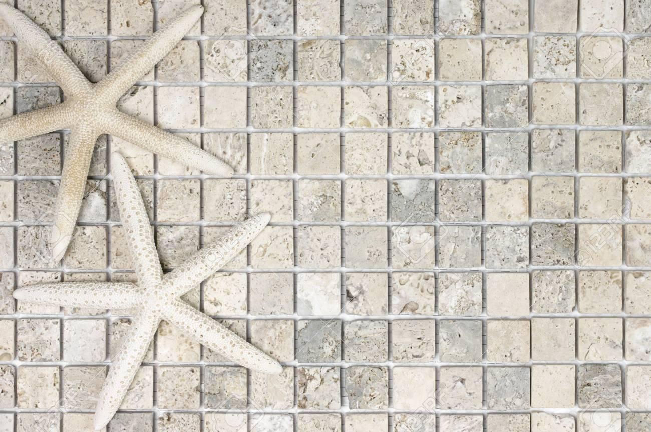 Pierre Naturelle Salle De Bain fond de la salle de bain: deux étoiles de mer sur un carrelage en pierre  naturelle. point de vue supérieur.