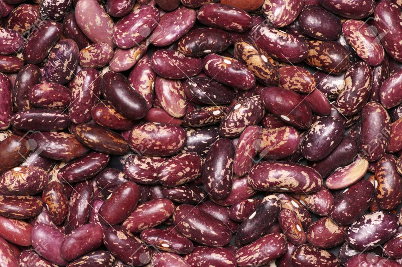 Heap Of Dark Red Speckled Kidney Beans Close Up Texture As Background Stock Photo Picture And Royalty Free Image Image 69724224