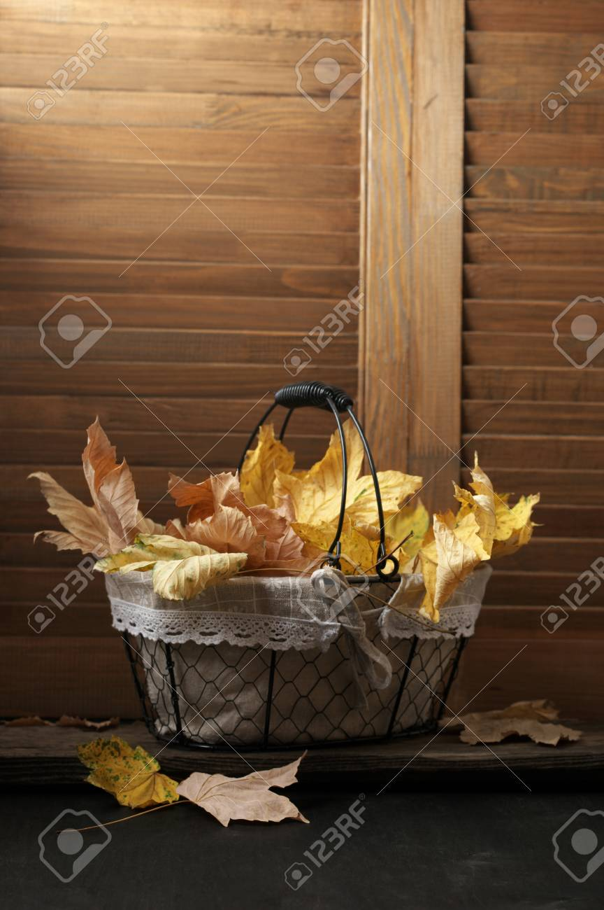 Stock Photo   Yellow Fall Leaves In Wire Basket Against Wooden Shutters. Autumn  Home Decor.