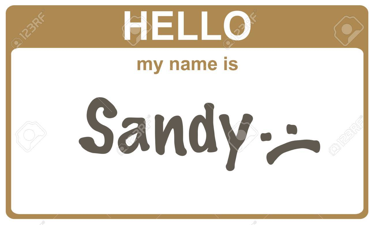 Hello My Name Is Sandy Sticker