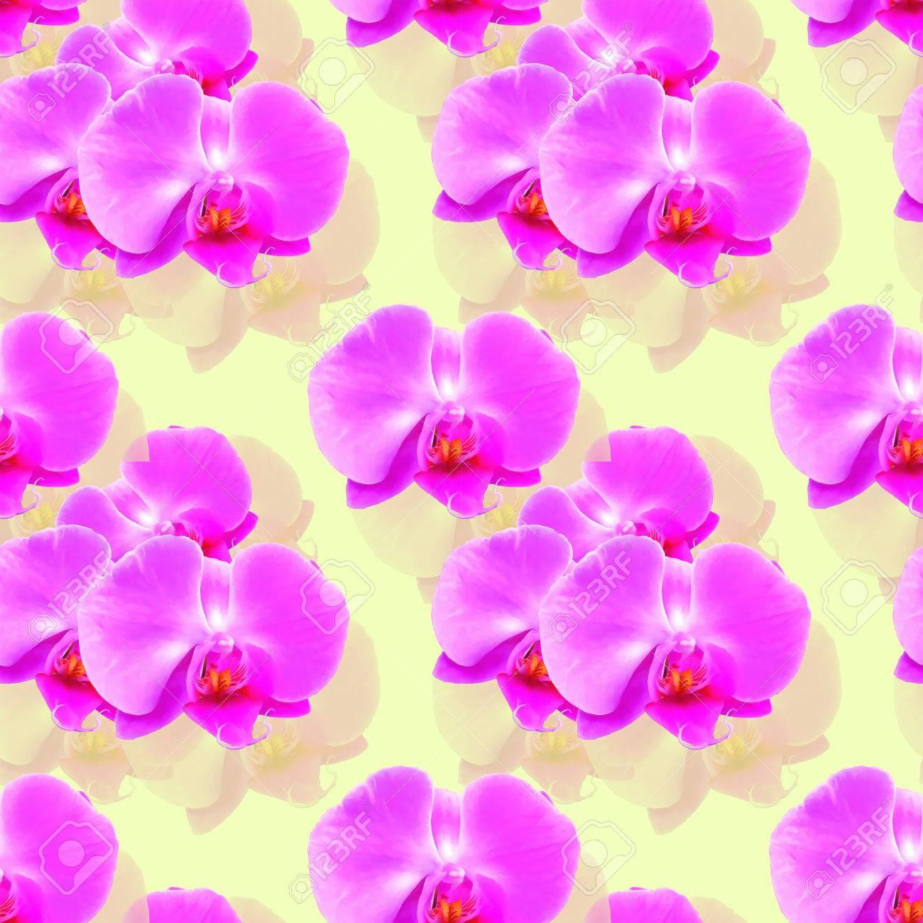 Orchidee Phalaenopsis Texture Des Fleurs Modele Continu Pour Replique Continue Fond Floral Collage Photo Pour La Production De Textile Tissu