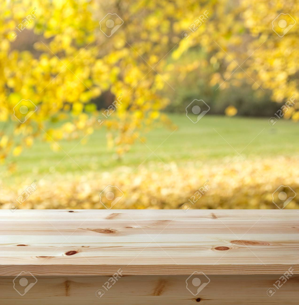 Empty wooden table against autumn background - 30527456