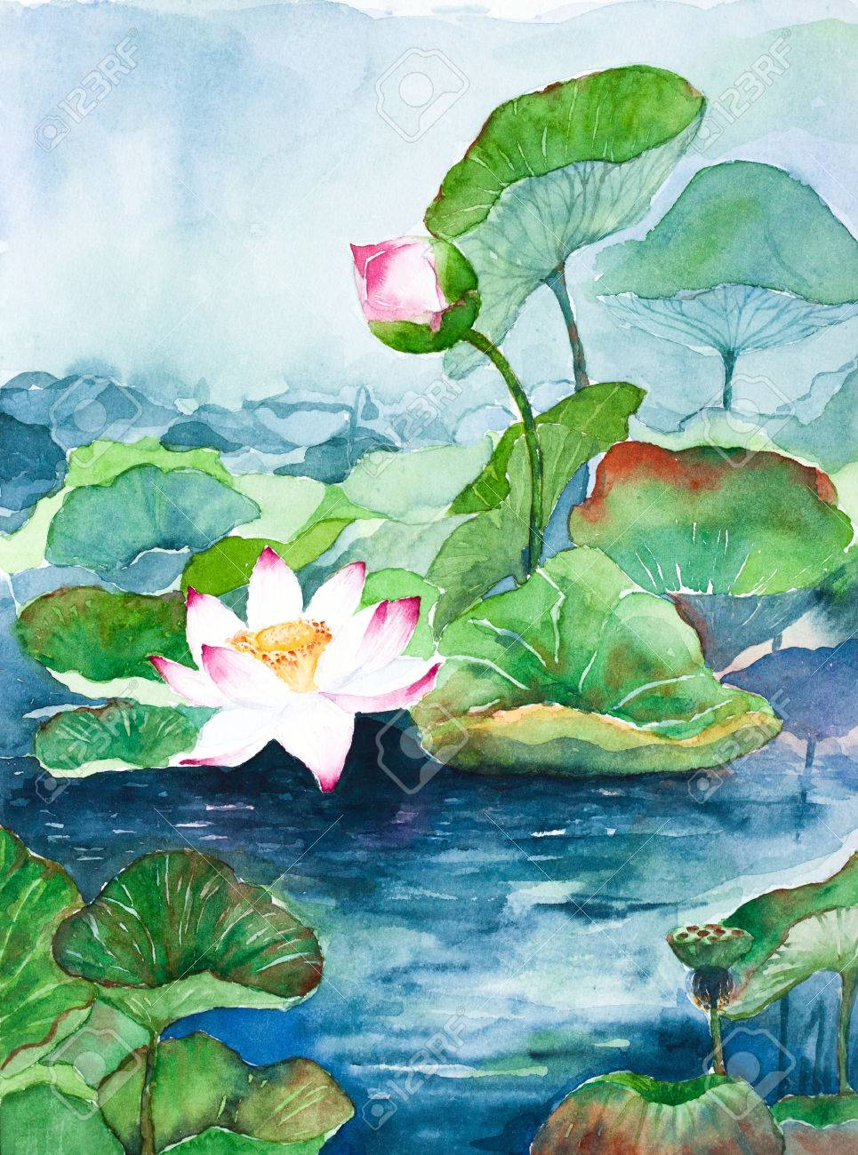 Lotus Flower Watercolor Painting Stock Photo Picture And Royalty
