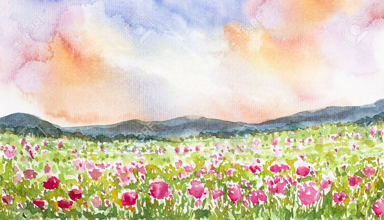 Pink Flower Field Landscape Watercolor On Paper Stock Photo Picture