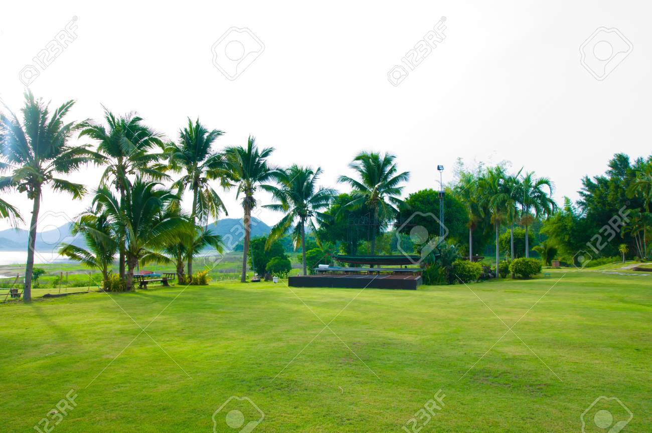 Green Gardan Stock Photo Picture And Royalty Free Image Image
