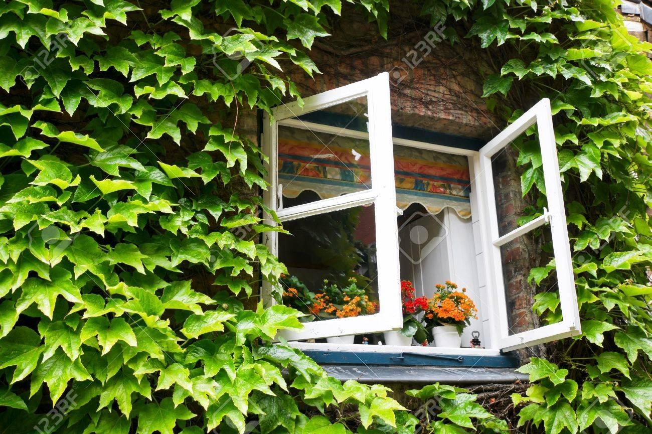 open window in rural house - 7415928