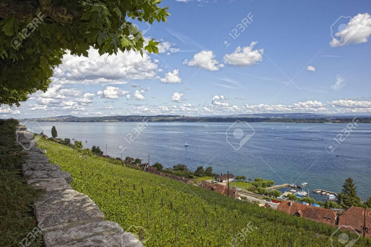 Lake Biel / Bienne Switzerland landscape - 68004070