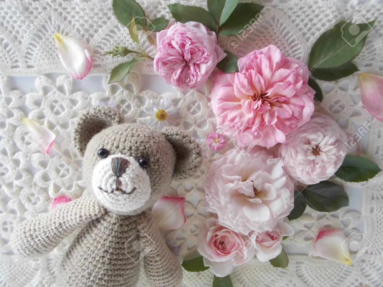 Schöne Englische Rose Blume Auf Häkeln Spitze Hintergrund
