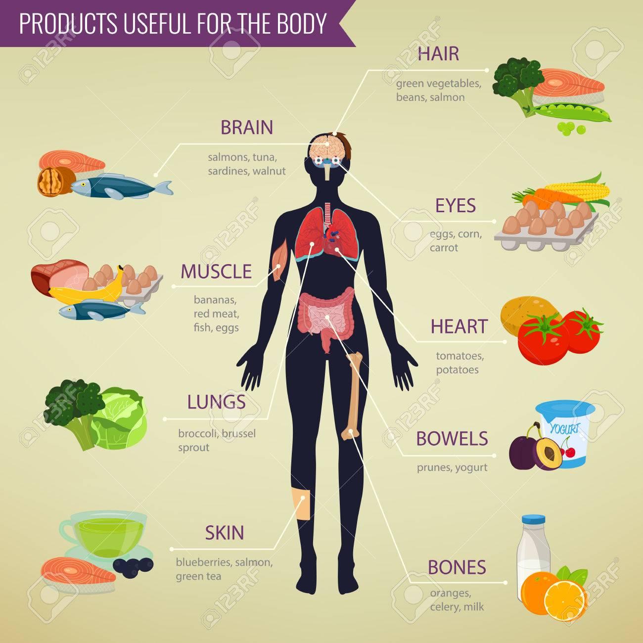 Resultado de imagen de alimentación en el cuerpo