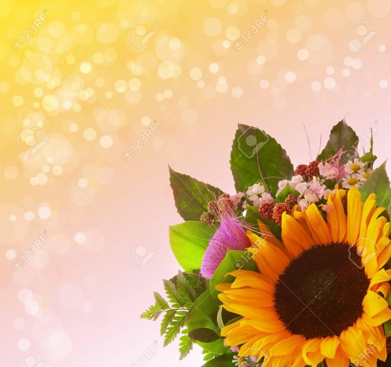 bouquet de tournesol isolé sur fond vert. banque d'images et photos