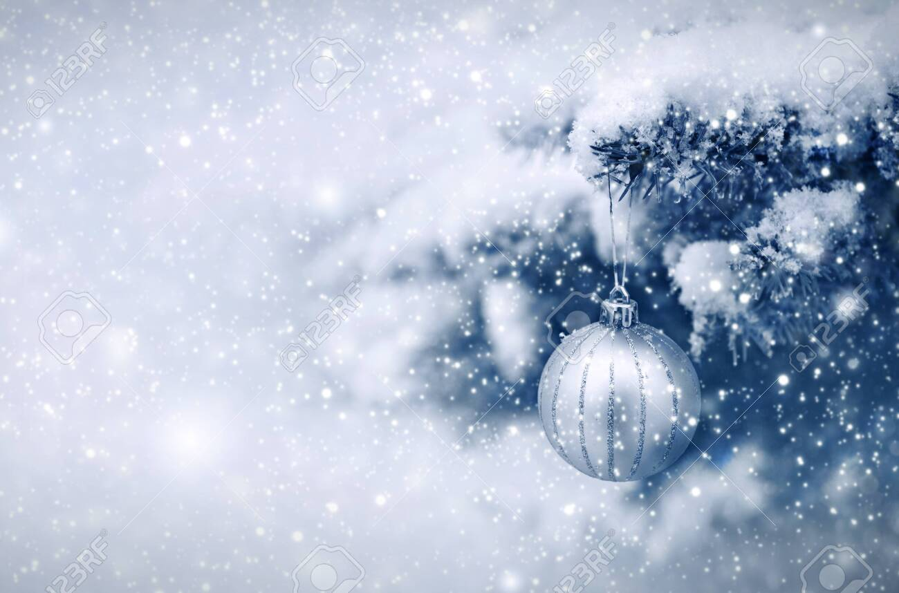 Silver Christmas Ball hanging on a Fir Tree Branch. Christmas Background. - 135036871