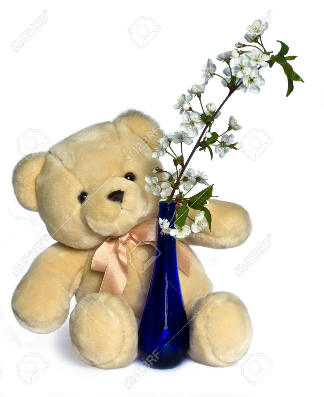 teddy bear and calyx flowers