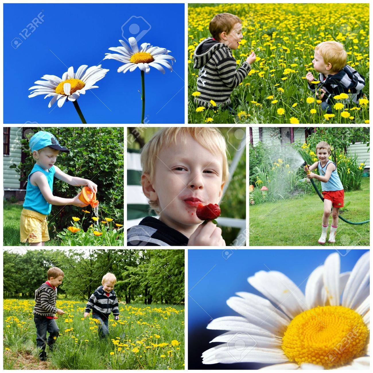 children and summer collage Stock Photo - 5202236