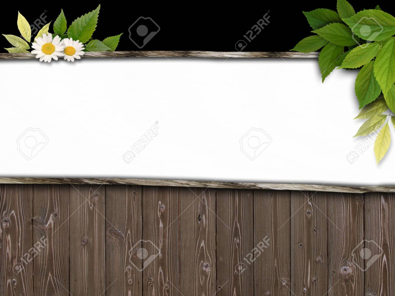 CG synthesis background image of wooden Stock Photo - 8659552