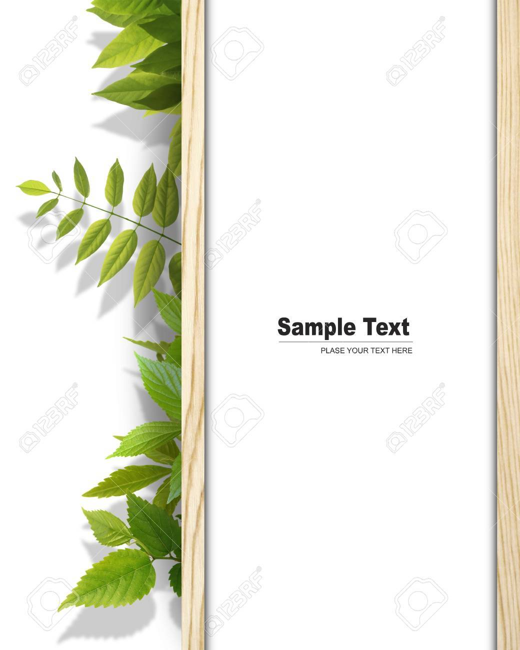 Frame made from tree Stock Photo - 9241170