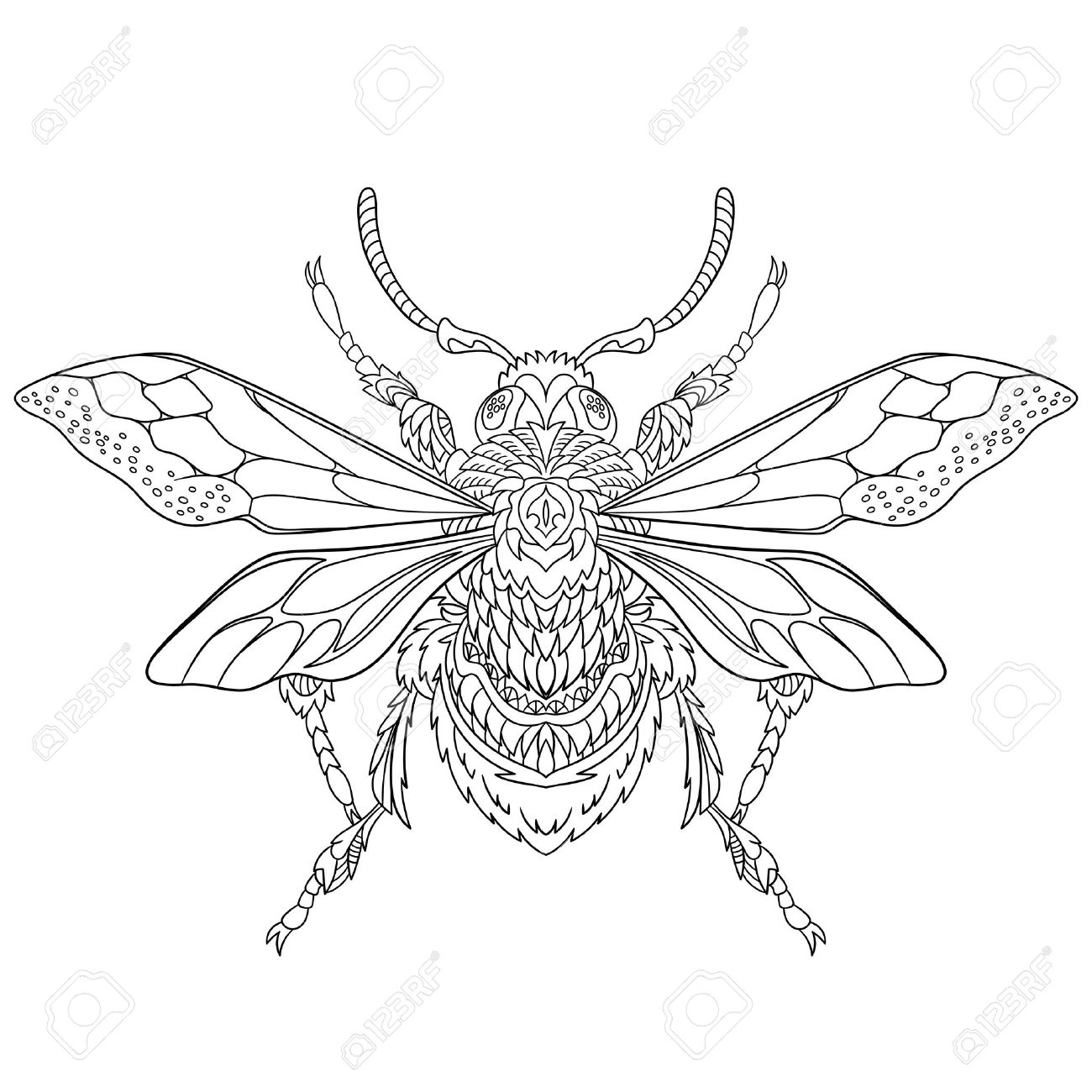 Stylized Cartoon Beetle Insect, Isolated On White Background. Sketch For  Adult Antistress Coloring Page