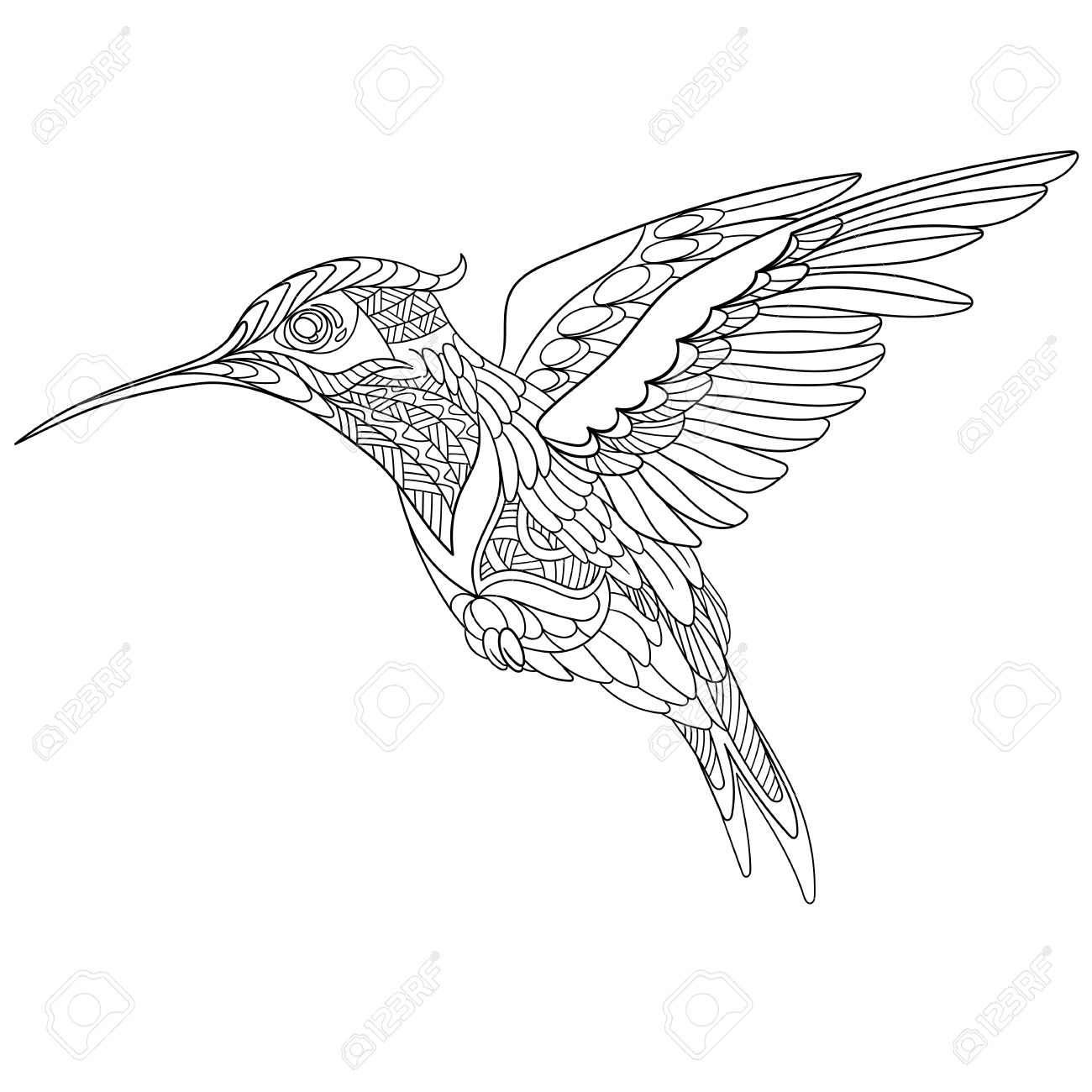 Stylized Cartoon Hummingbird, Isolated On White Background. Sketch For  Adult Antistress Coloring Page.