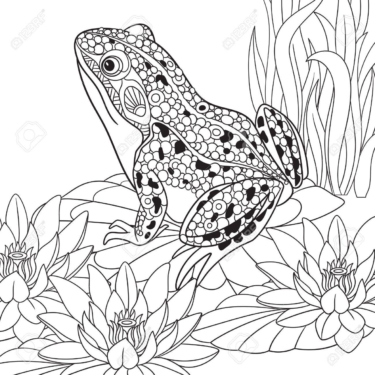 Coloriage Fleur De Nenuphar.Grenouille De Bande Dessinee Stylisee Zentangle Assis Parmi Les Fleurs De Lotus Nenuphars Esquisse Pour Antistress Adulte Coloriage Main Doodle