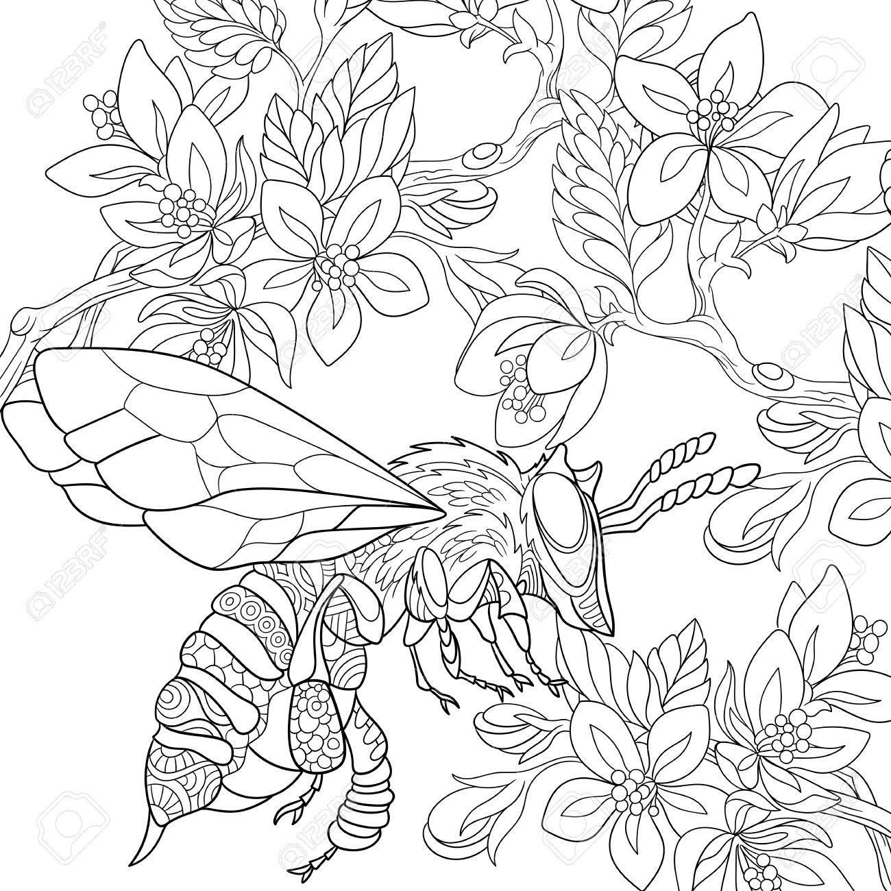 Abeja De Dibujos Animados Volando Entre Las Flores De Sakura Boceto Para Colorear Página Del Adulto Antiestrés Mano Bosquejo Dibujado Elementos