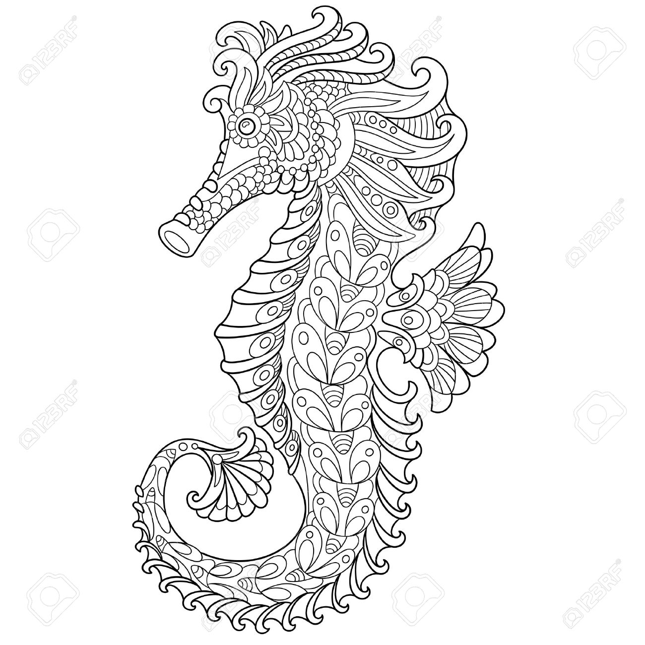 coral reef sea horse images u0026 stock pictures royalty free coral