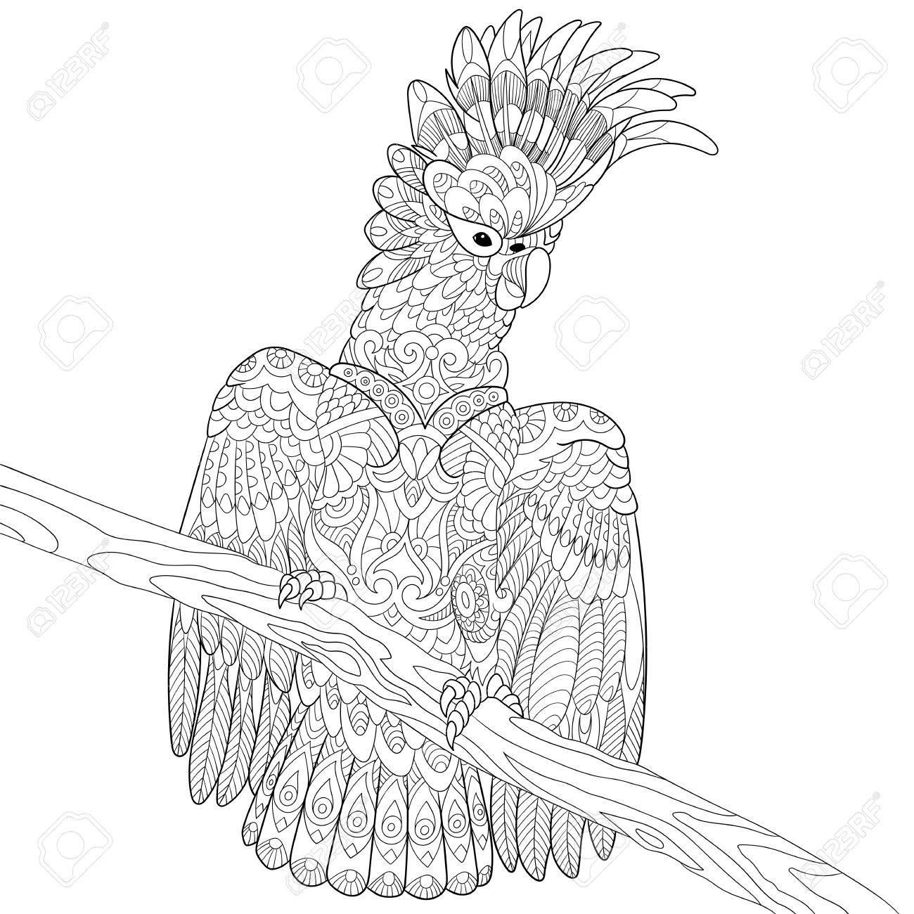 Stilisierte Karikatur Kakadu Papageien Und Holzbaumzweig. Skizze Für ...