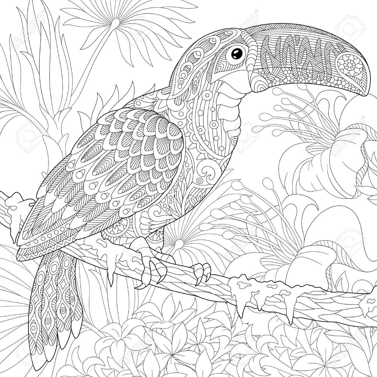 Stylized toucan bird sitting on palm tree branch among hibiscus flowers. Freehand sketch for adult anti stress coloring book page with doodle elements. - 61801586