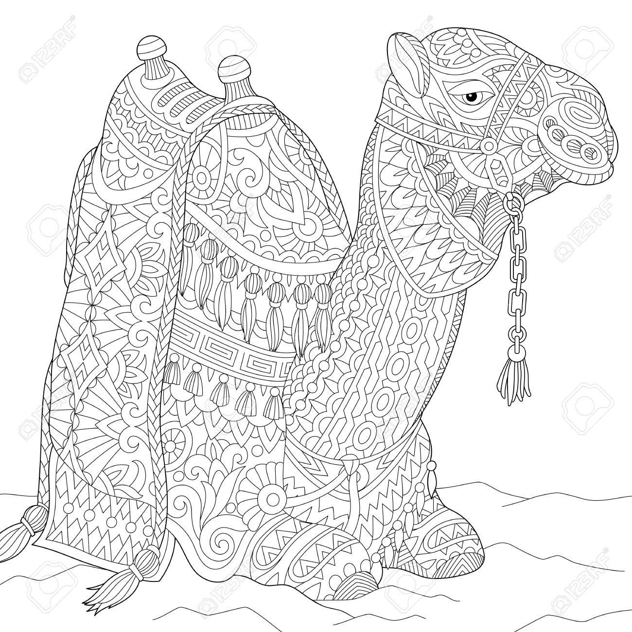 Stylized cartoon camel, isolated on white background. Freehand sketch for adult anti stress coloring book page with doodle and zentangle elements. - 70128106