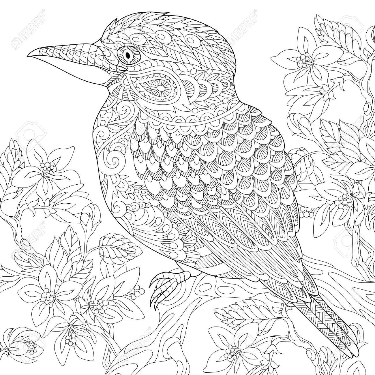 Stylized Australian Kookaburra Bird And Cherry Blossoming Tree Freehand Sketch For Adult Anti Stress Coloring