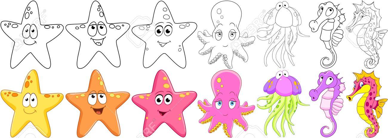 Conjunto De Animales De Dibujos Animados. Estrellas De Mar ...