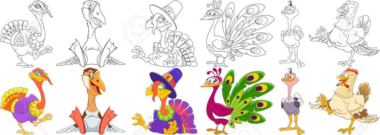 Conjunto De Animales De Dibujos Animados. Colección De Aves De ...