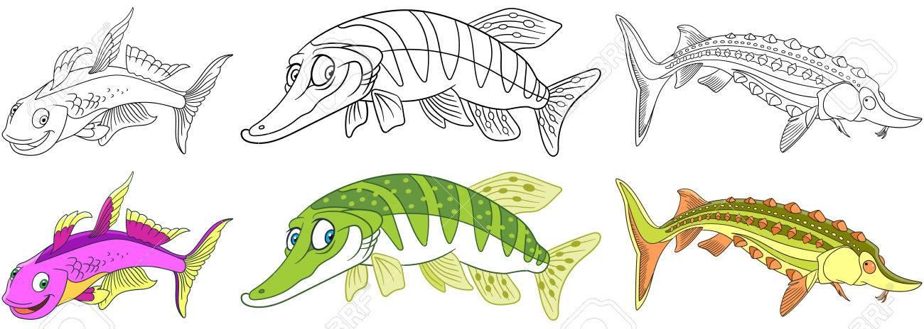 Conjunto De Animales Submarinos De Dibujos Animados. Furcata Arco ...