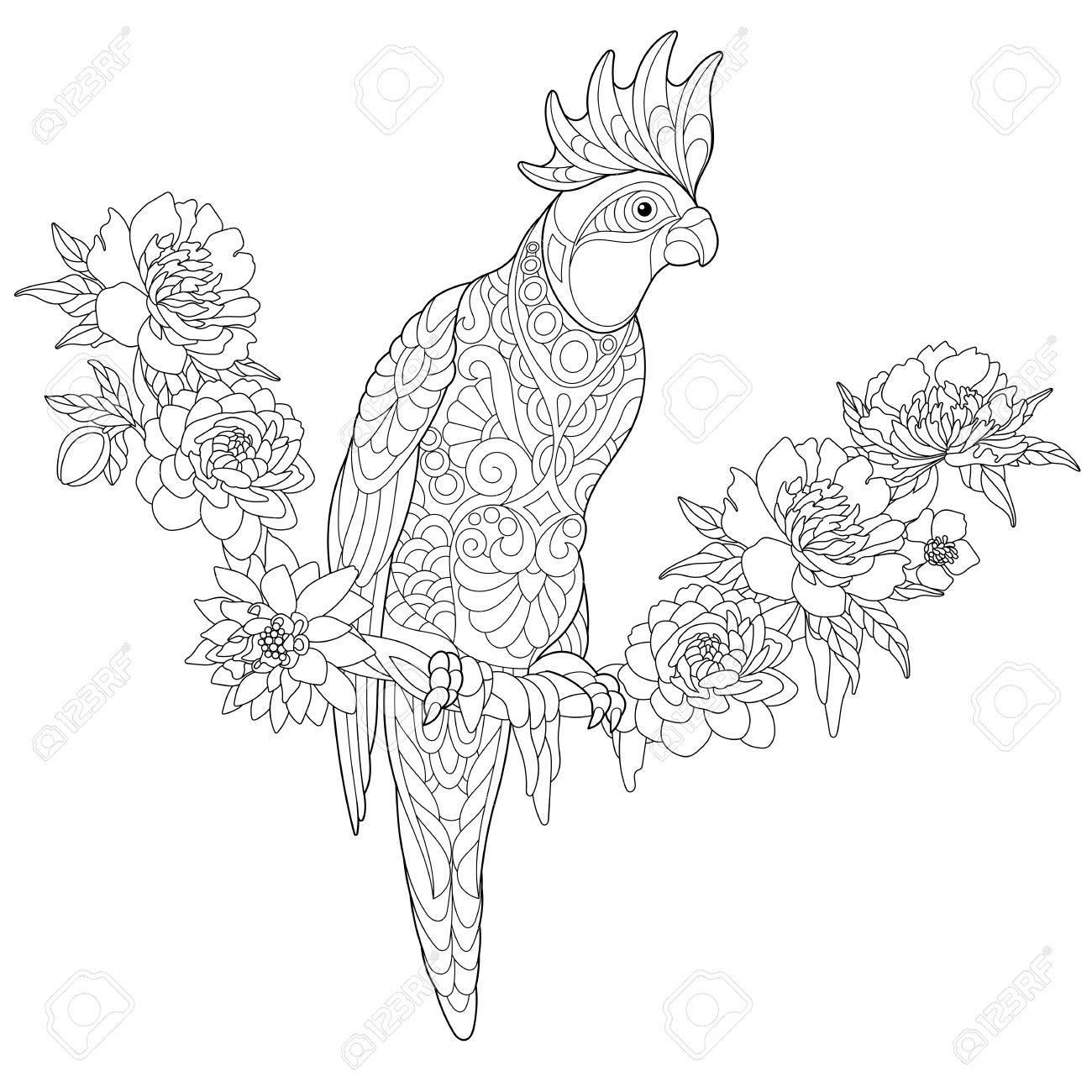 Malvorlage Von Cockatoo Papagei Sitzt Auf Tropische Liane Mit Blumen ...
