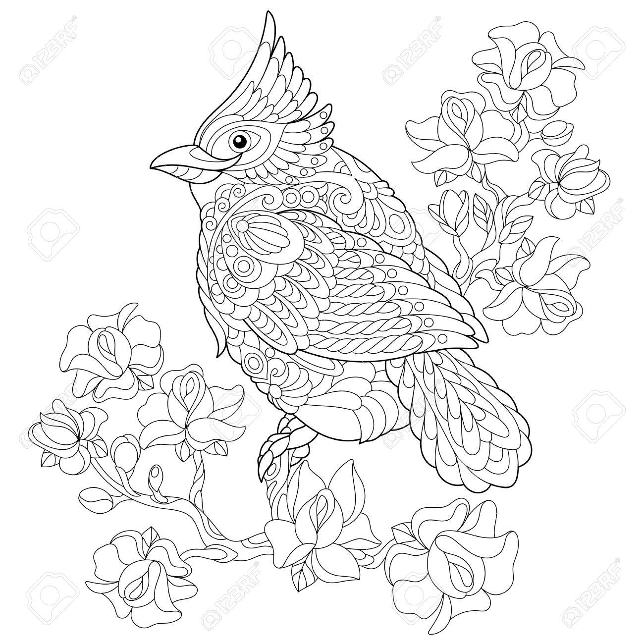Coloring book page of northern red cardinal bird sitting on cherry..
