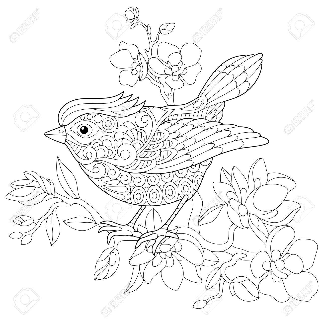 リンゴ開花木の枝の上に座って雀鳥の本ページを着色しますフリーハンド